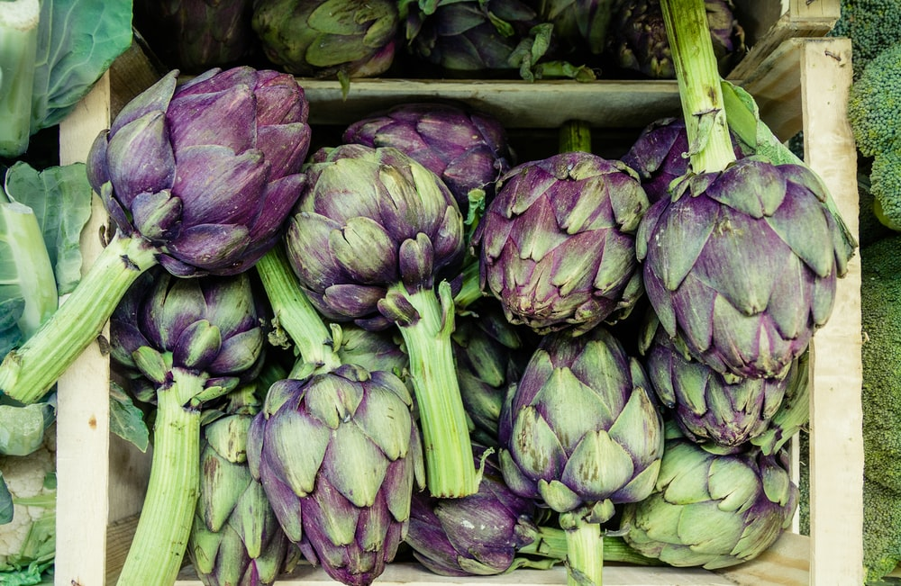 close-up photography of green and purple vegetables