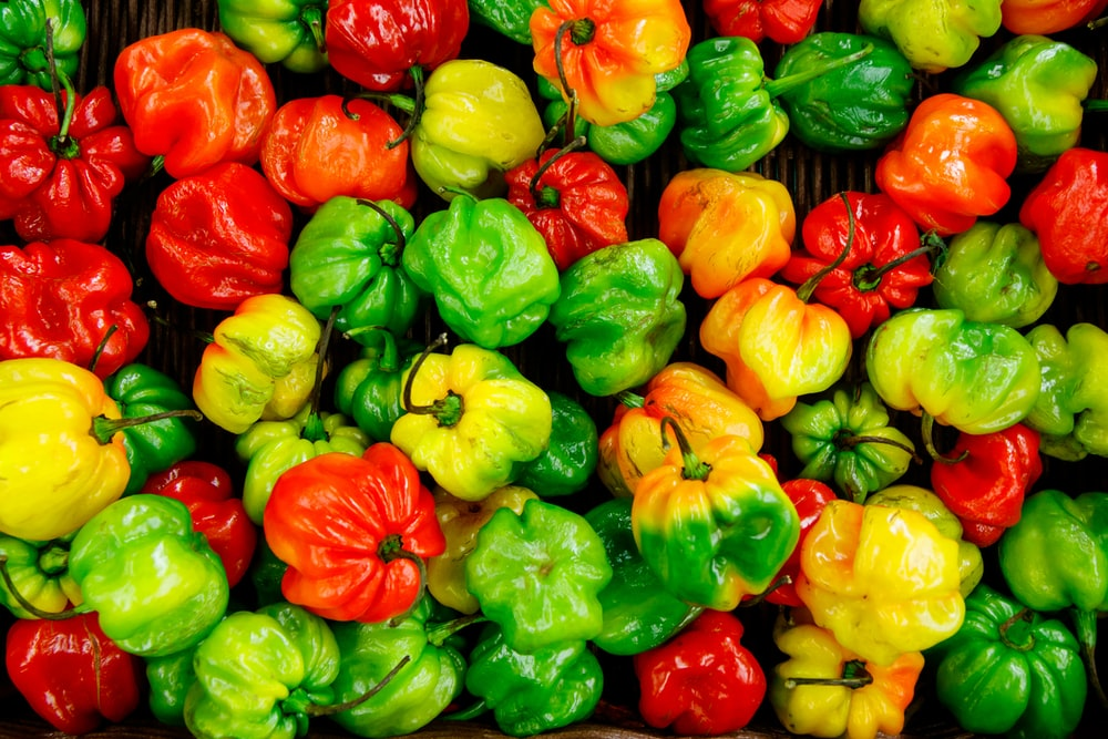 bunch of bell peppers