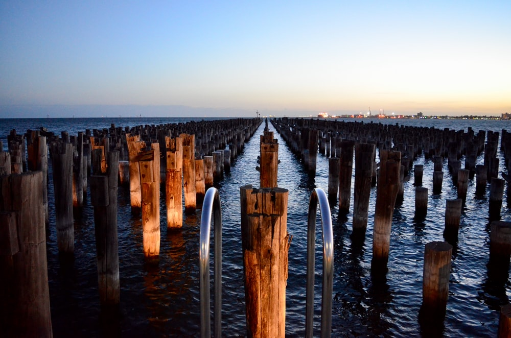 bird's eye view of wooden poles on body of water
