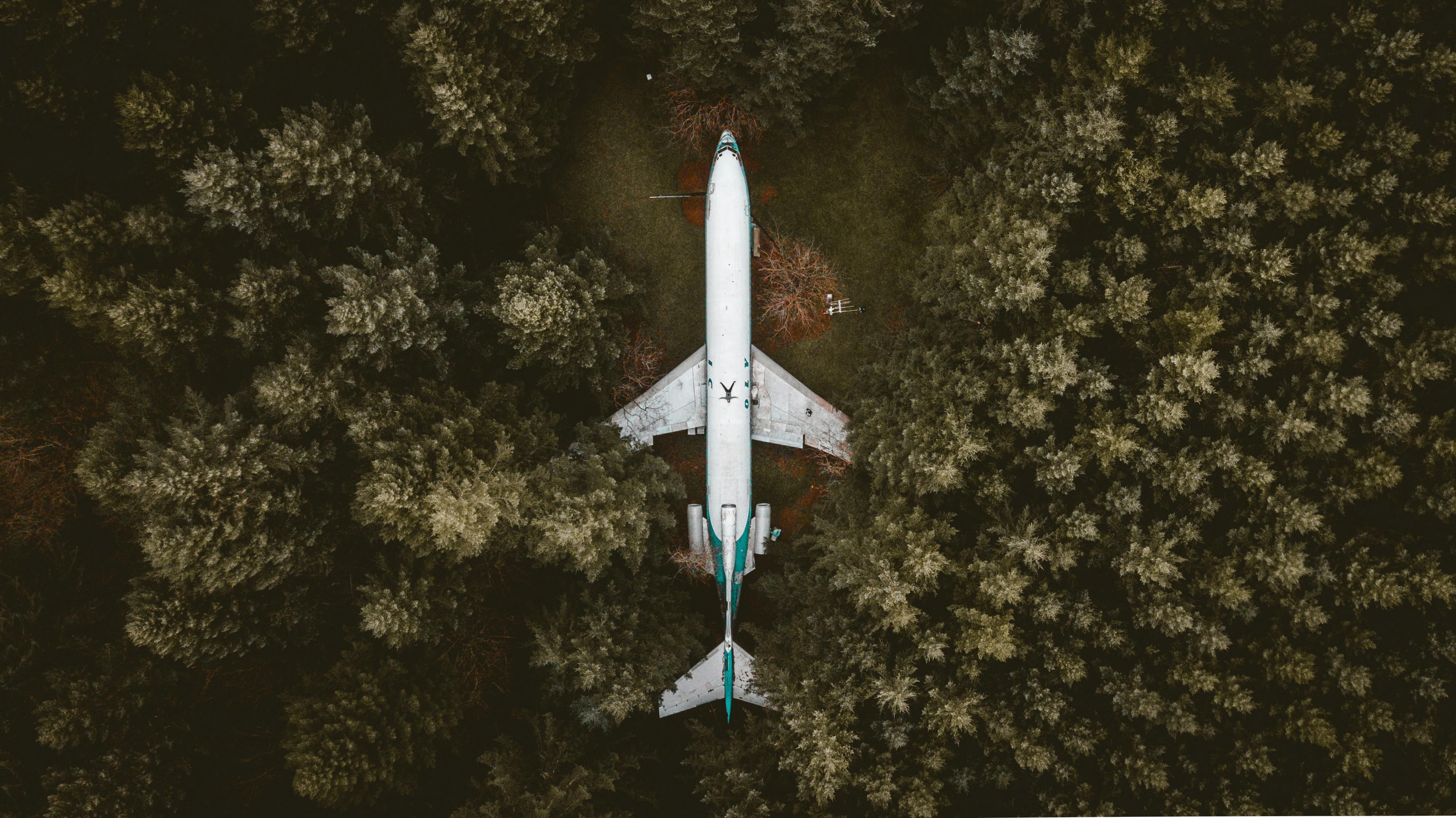 aerial photography of an airplane surrounded with trees