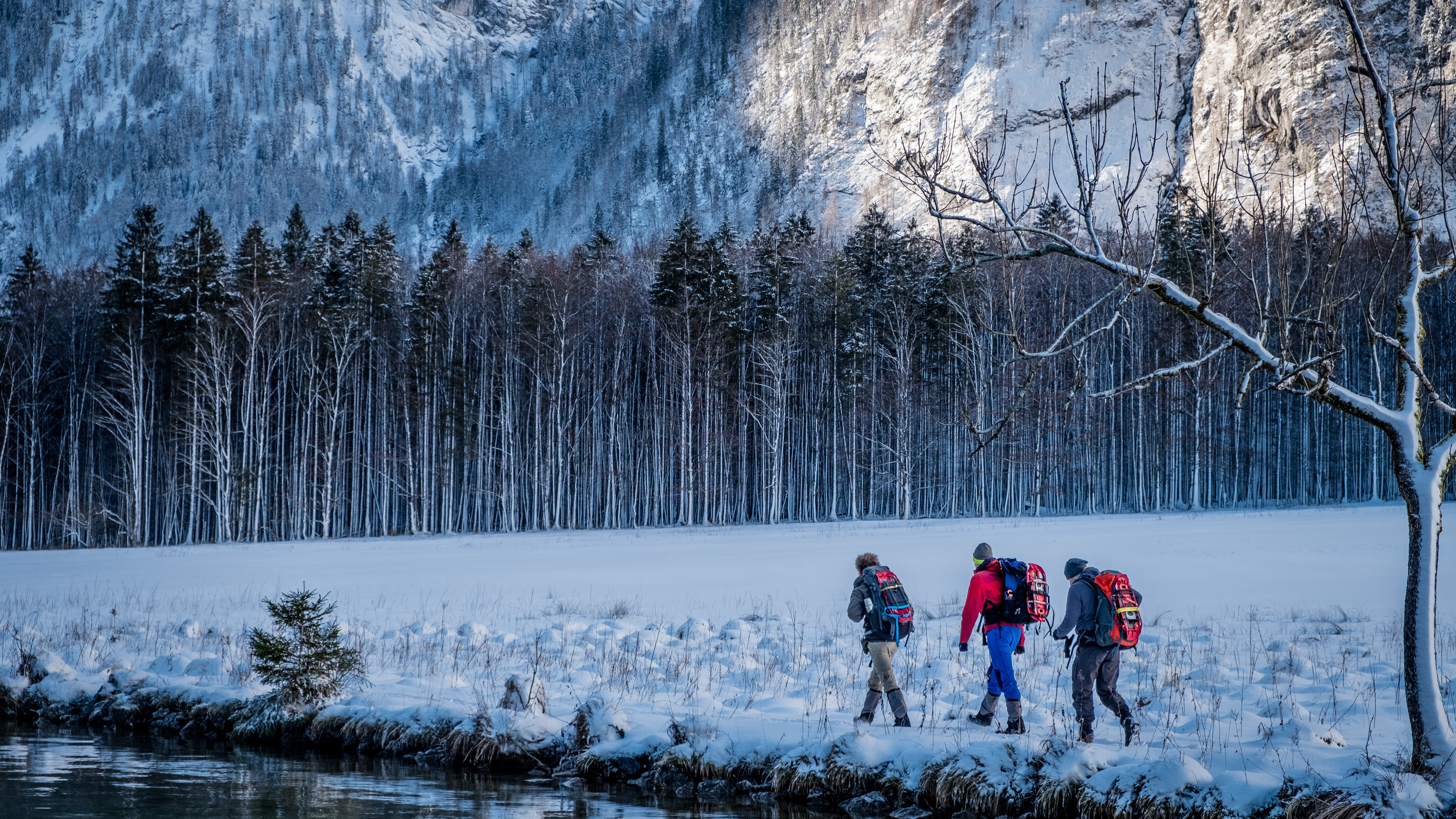 three person walking beside body of water during snow season