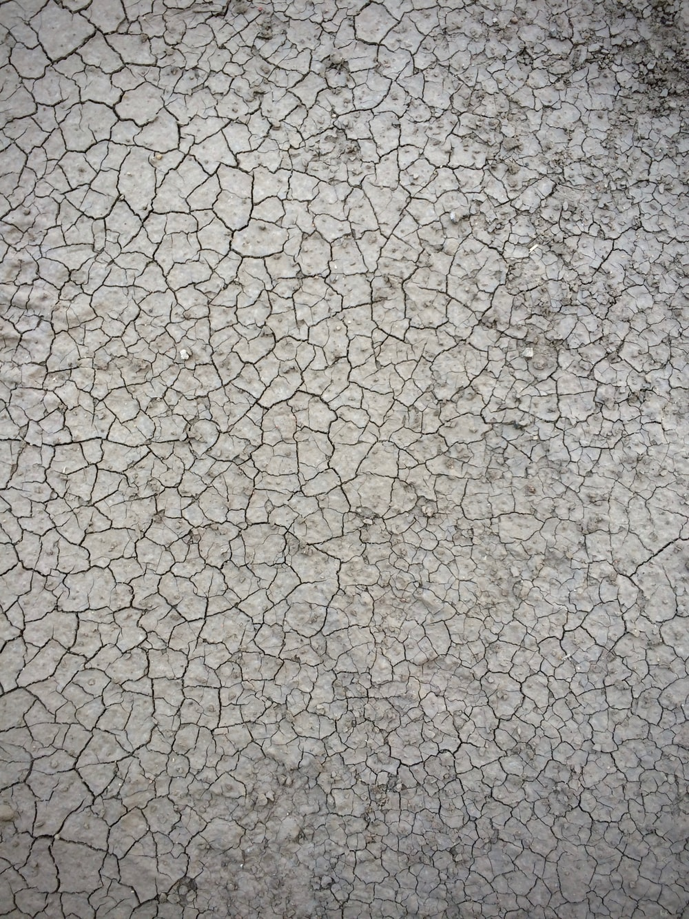 high angle photo of dried soil