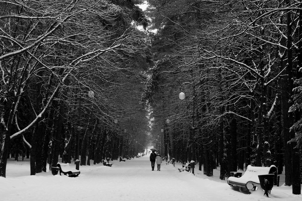 couple walking on snow covered road