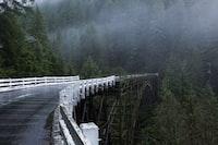 bridge towards mountain with trees during foggy daytime