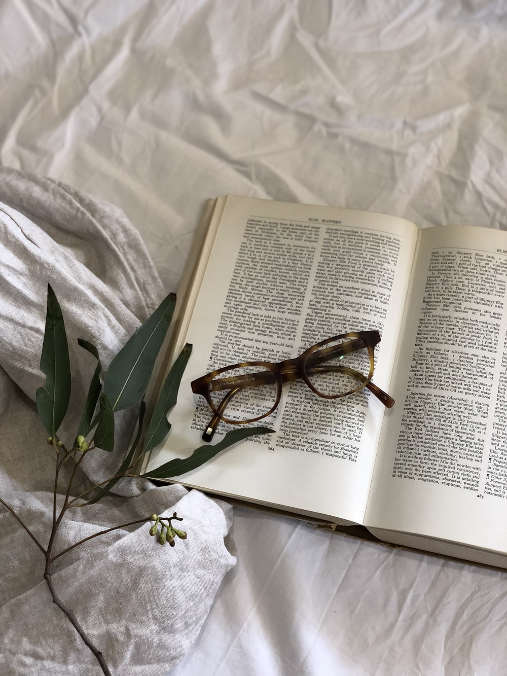 eyeglasses on top of book page beside green leafed plant