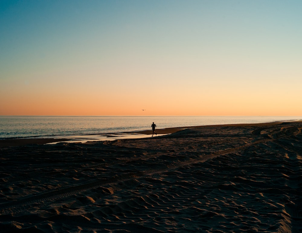 person on seashore during golden hour