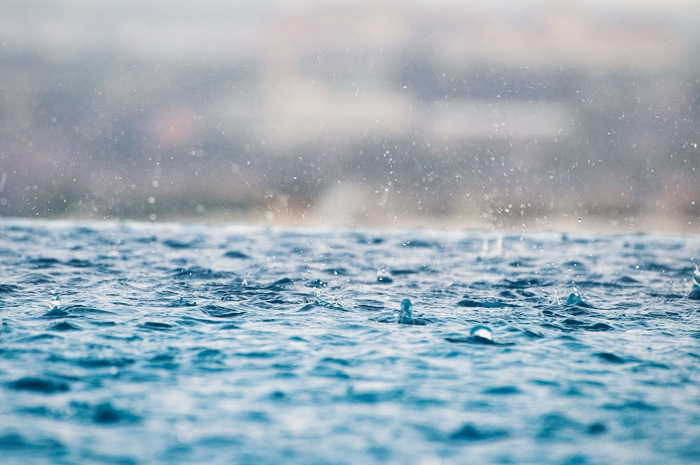 closeup photography of water drops on body of water