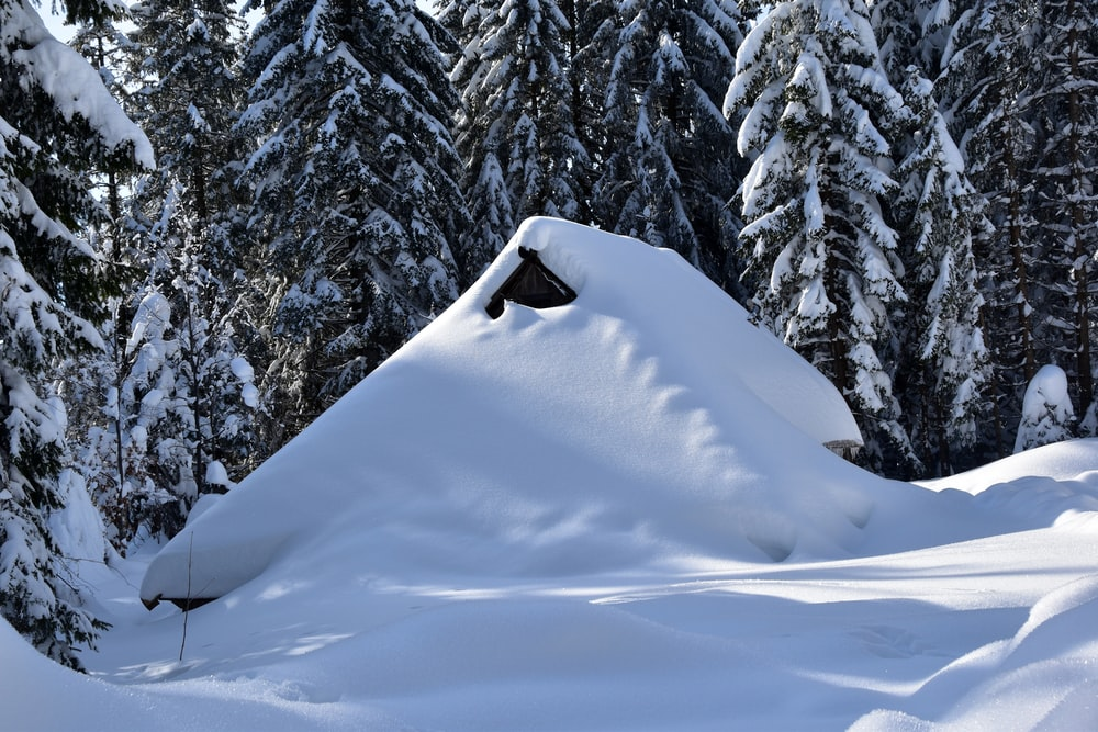 house near trees covered with snow