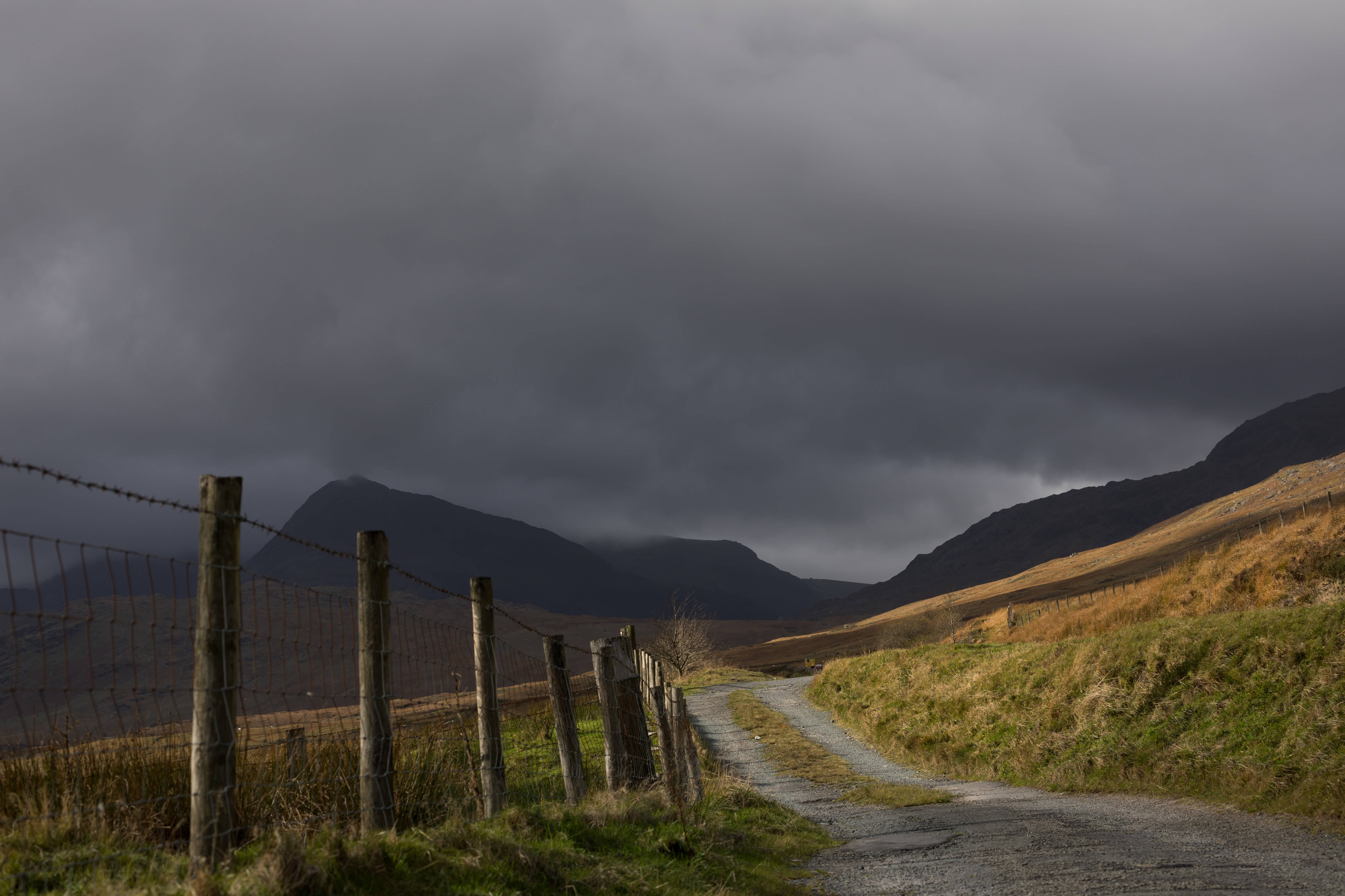 grass covered dirt road leading to mountains under gloomy sky