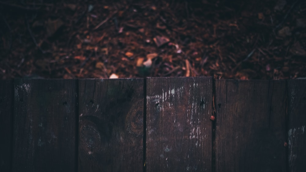 shallow focus photography of wooden fences