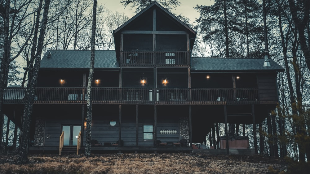 landscape photography of cabin