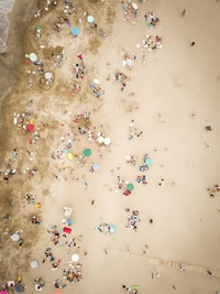 aerial photography of people on beach