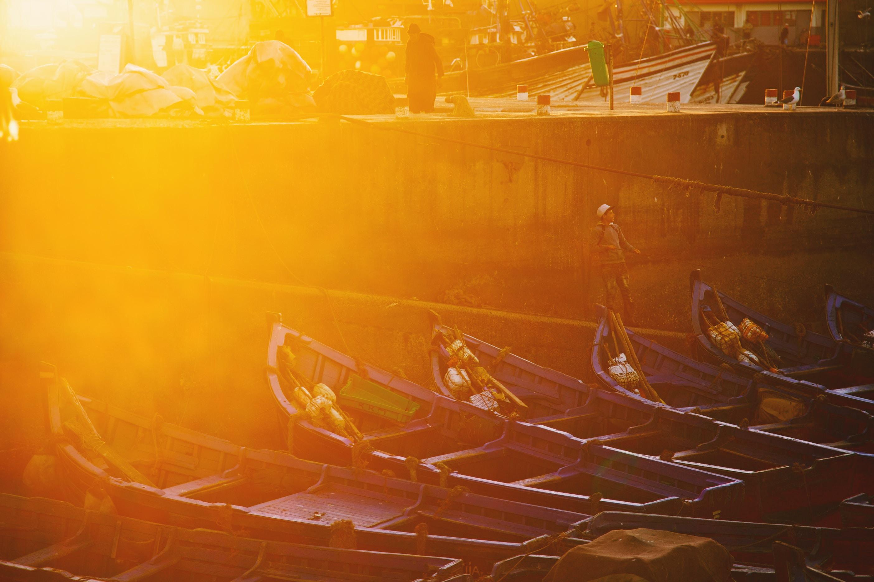canoe boats on body of water