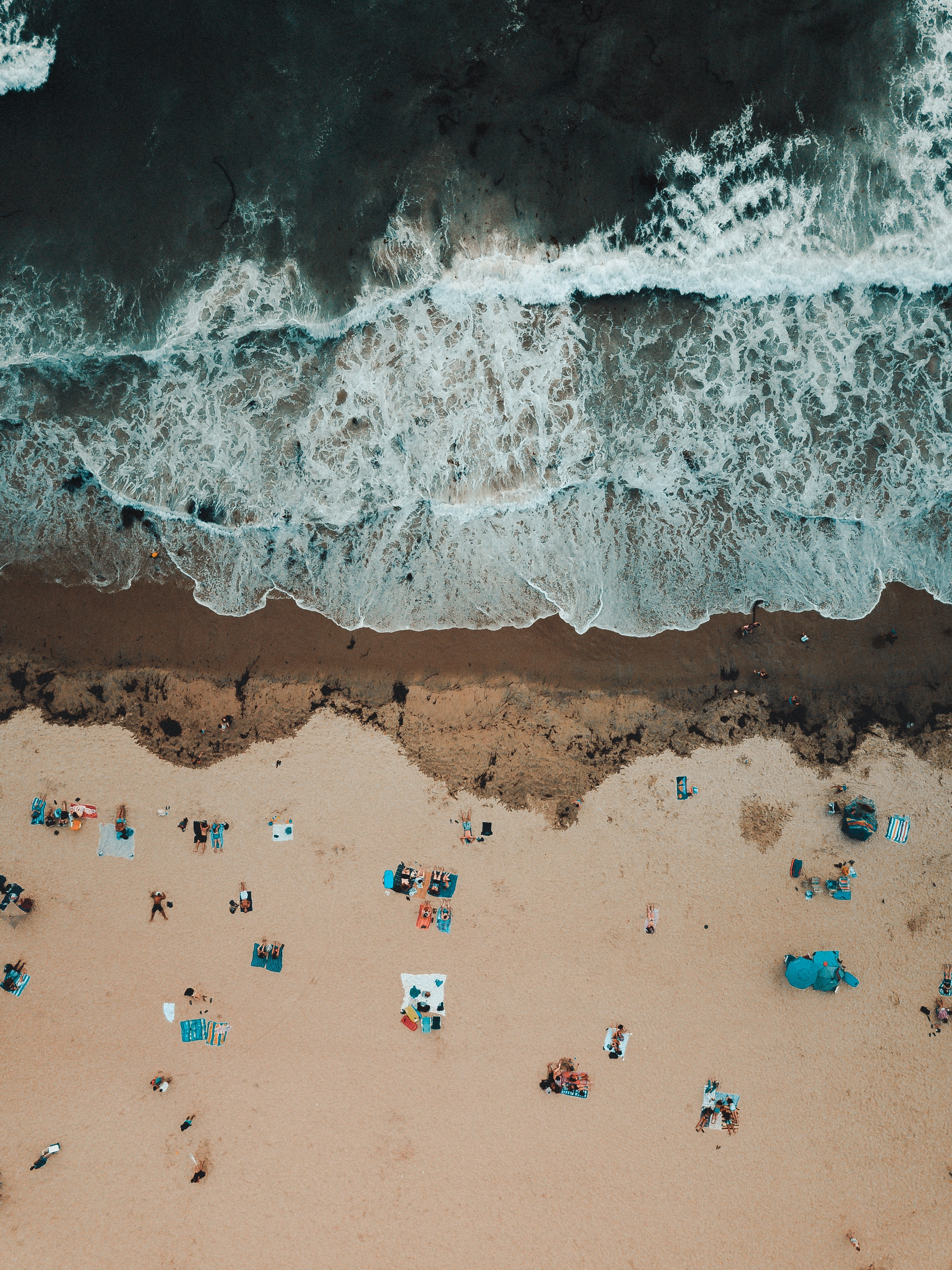 bird's eye view photography of people near seashore