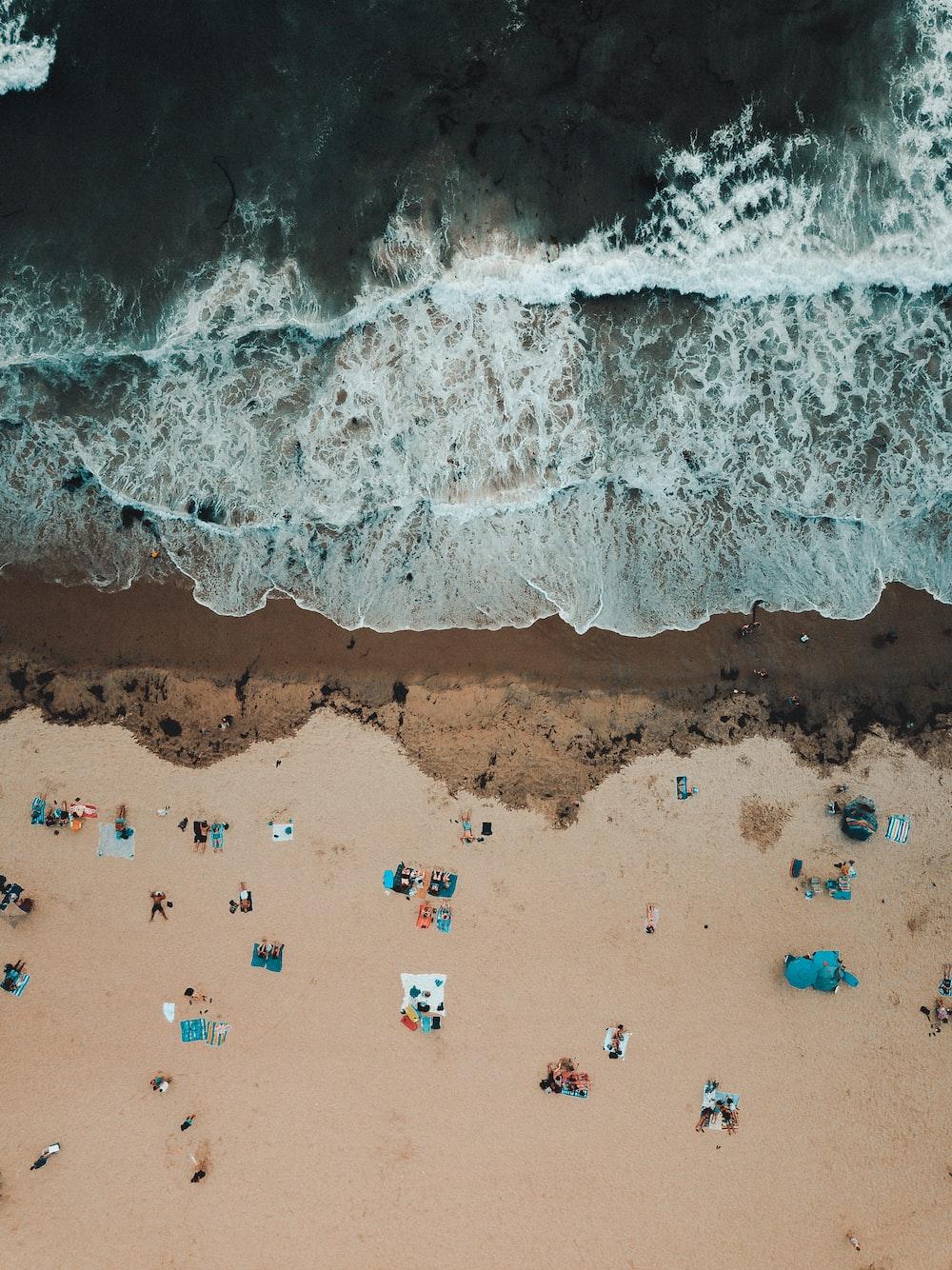 bird's eye view photography of people near seashore