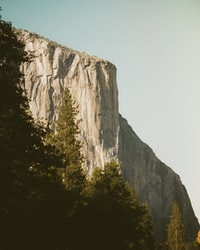 brown mountain surrounded by trees