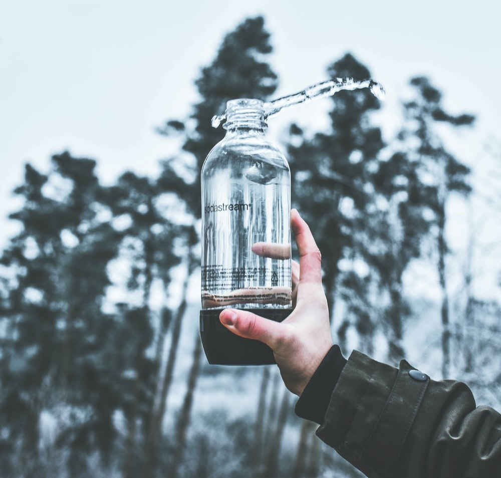 person holding glass bottle