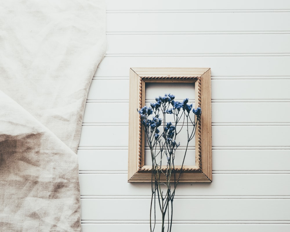 blue petaled flowers in front on brown wooden frame