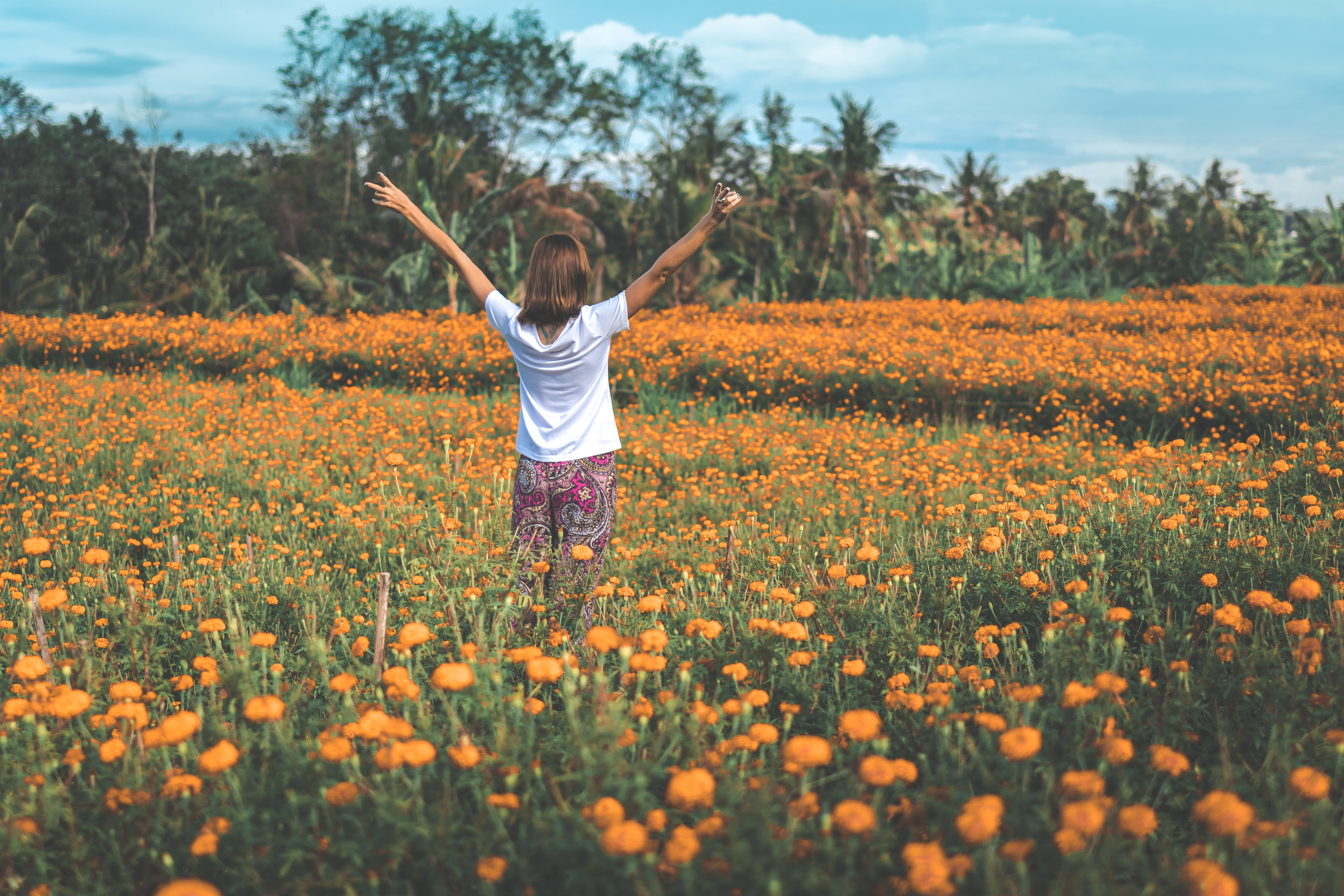 woman standing in orange flower field during daytime