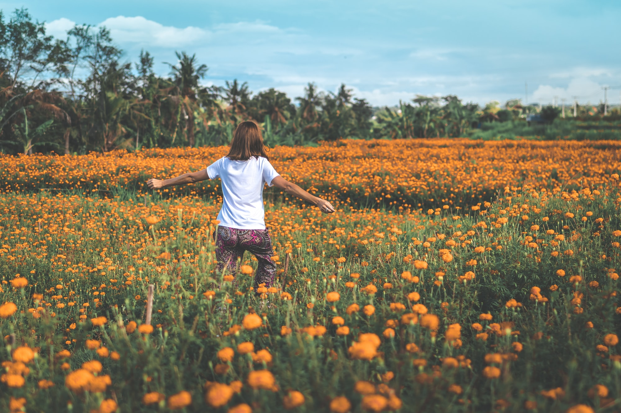 Happy woman on a marigold field. Tropical island of Bali, Ubud area, Indonesia.