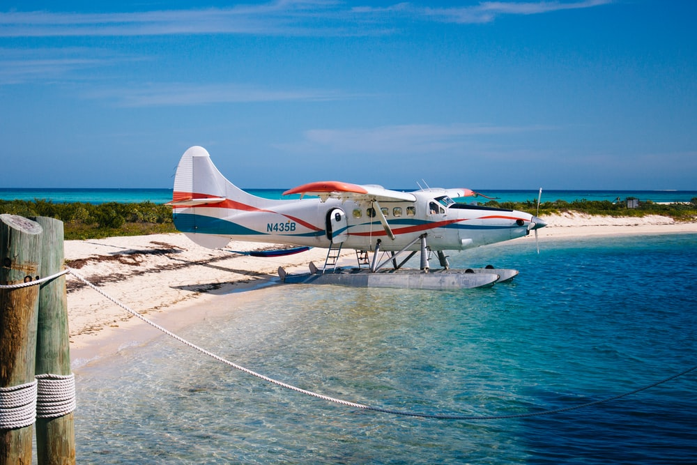 white seaplane on body of water