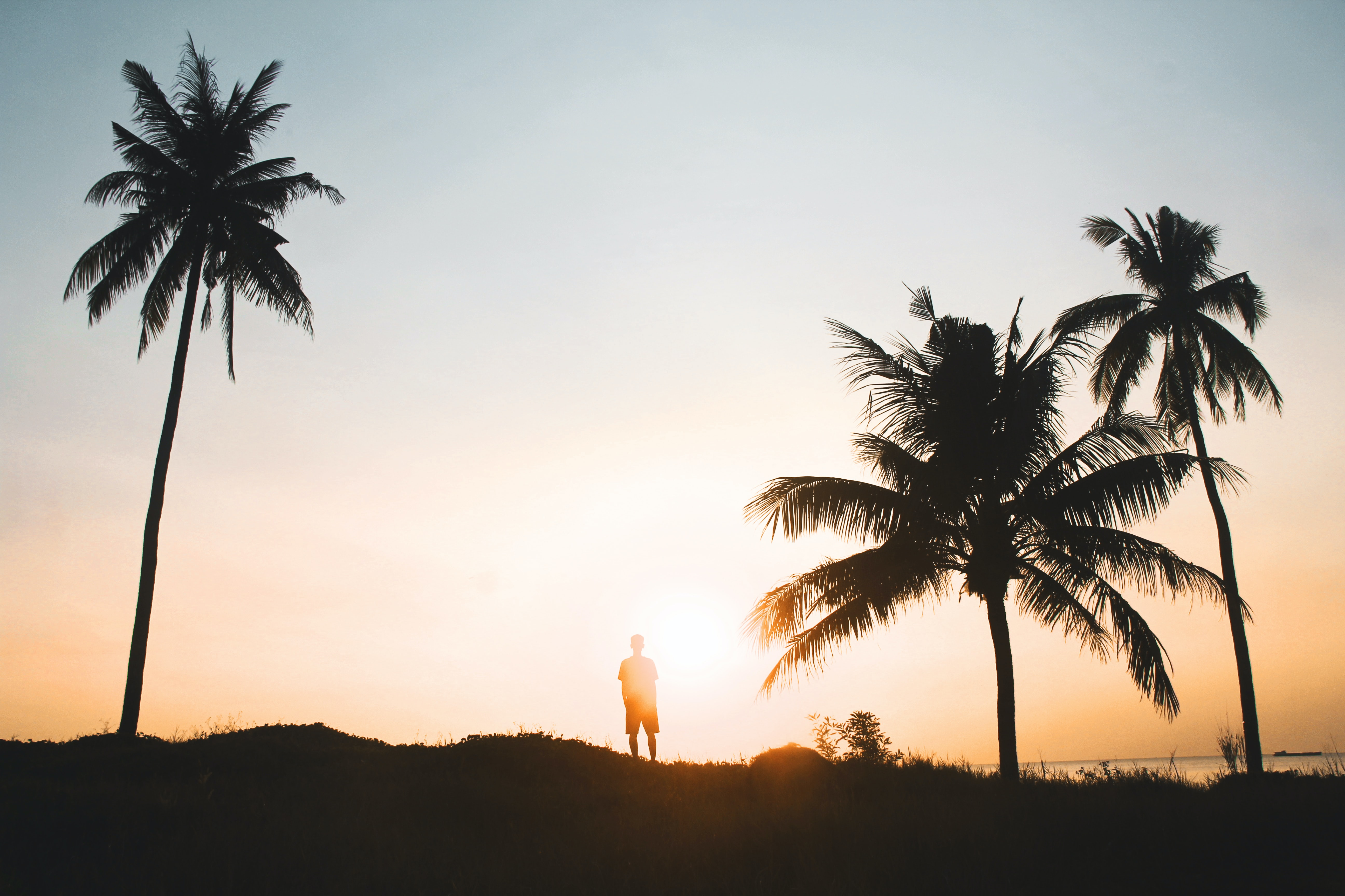 man standing near coconut trees during golden hour