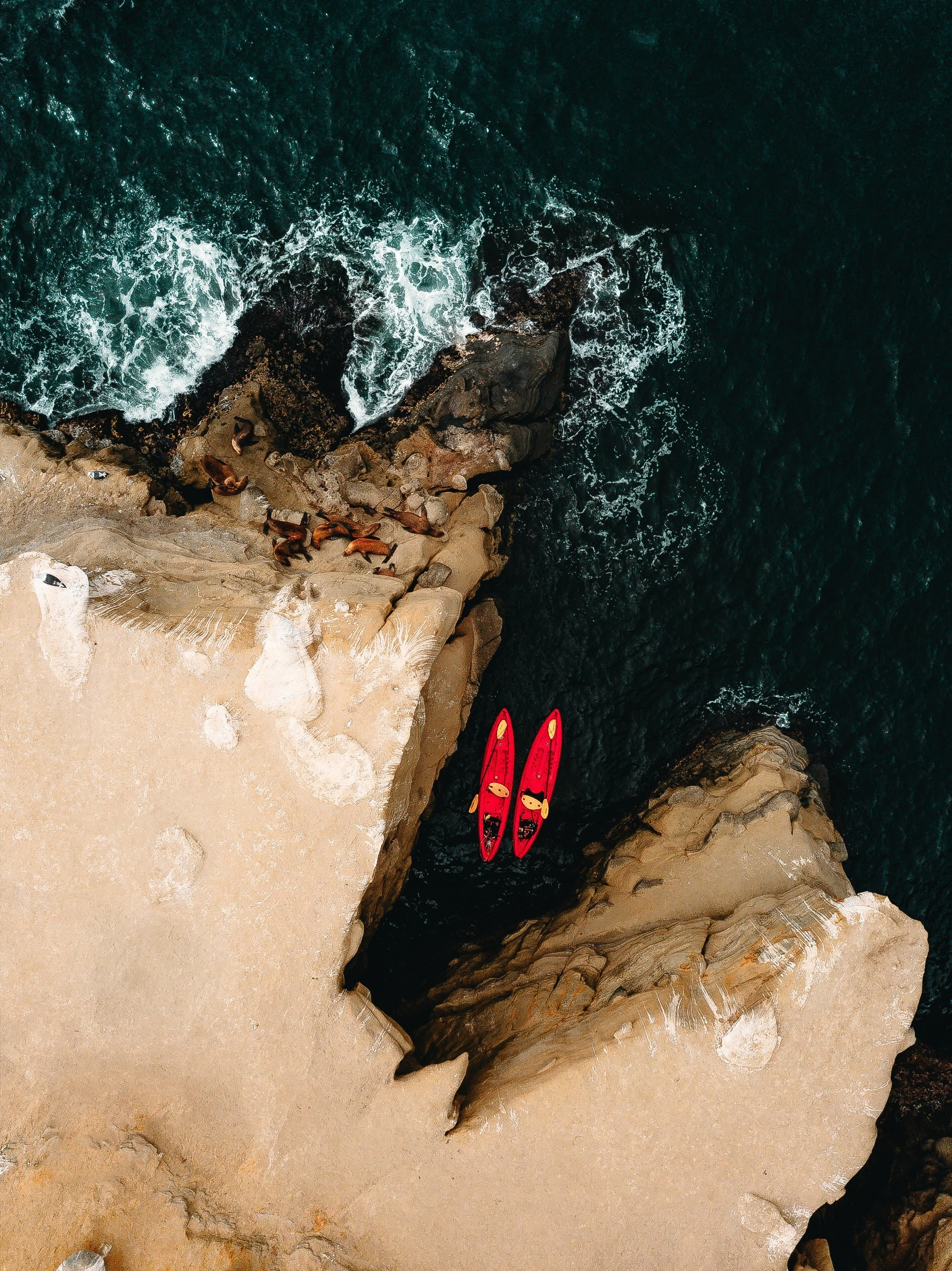 aerial photography of two red kayaks