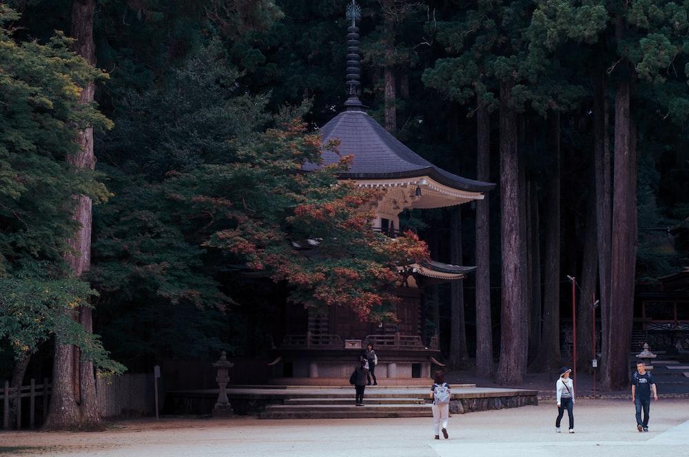 person walking towards pagoda