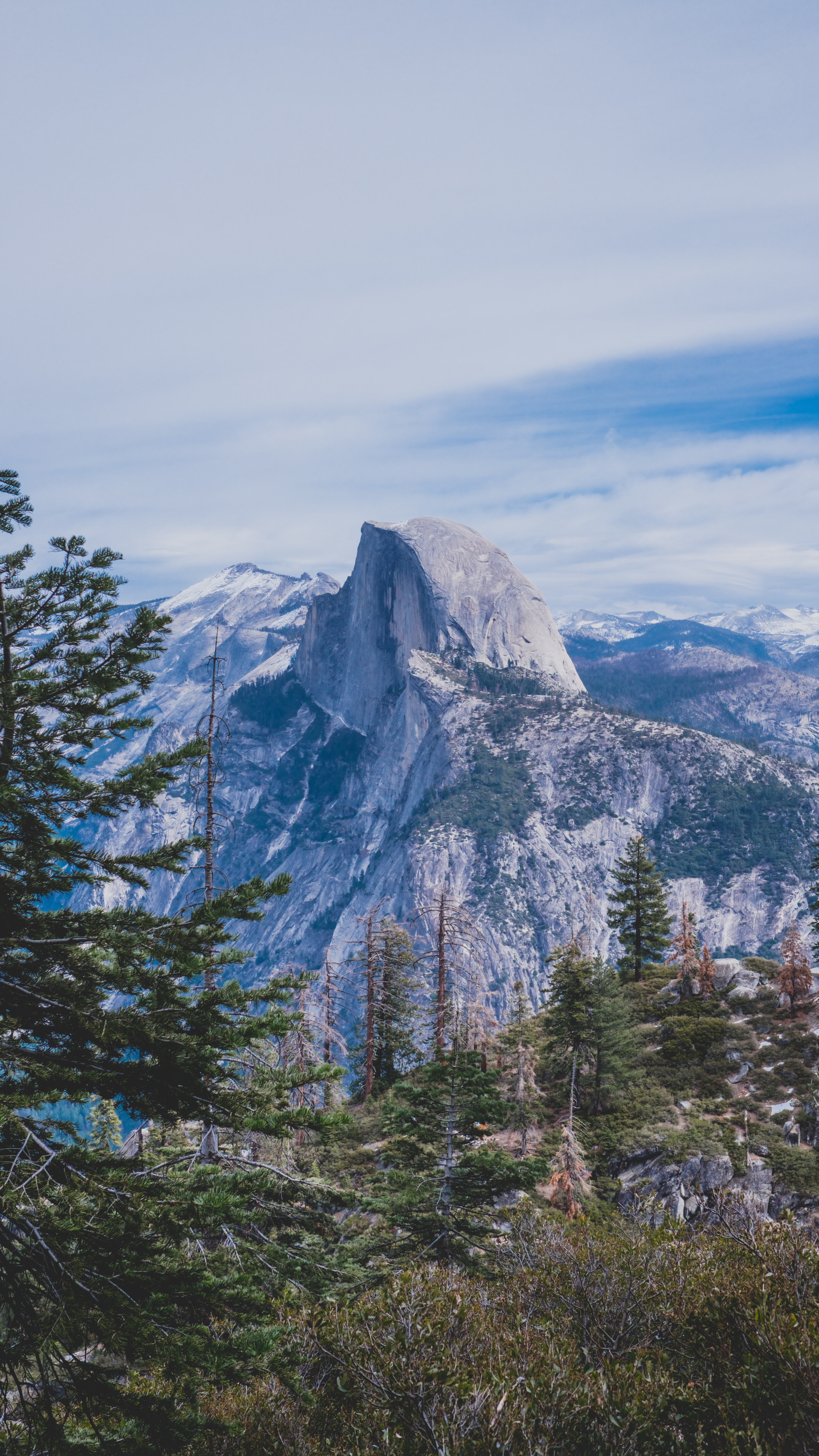 landscape photography of mountain and forest