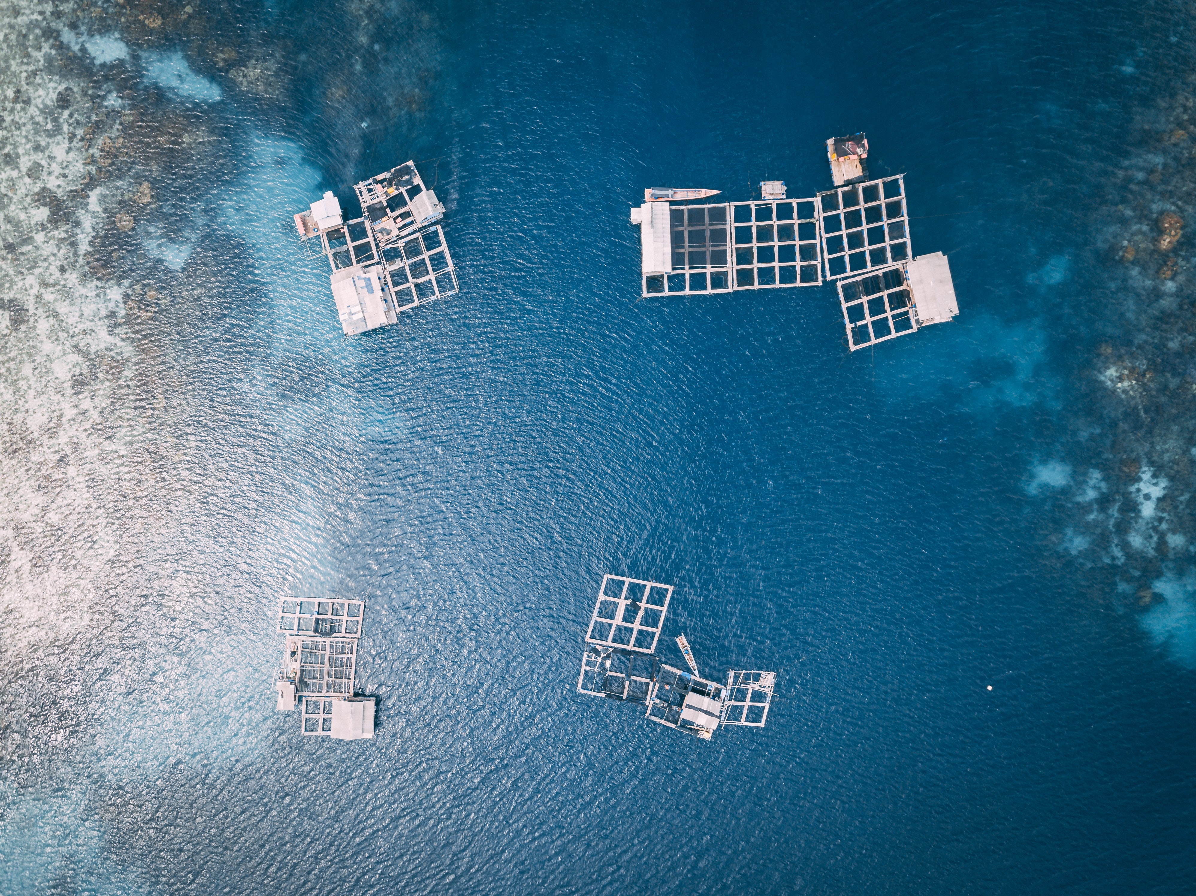 aerial photography of white frames on top of water