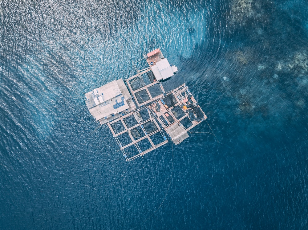 aerial view of house surrounded by water