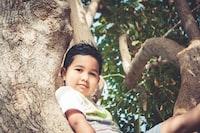 boy on tree sitting