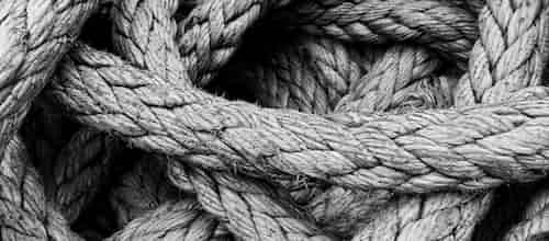 פסיכותרפיה והתמקדות: על חשיבות הקשר הטיפולי בתהליכי התמקדות