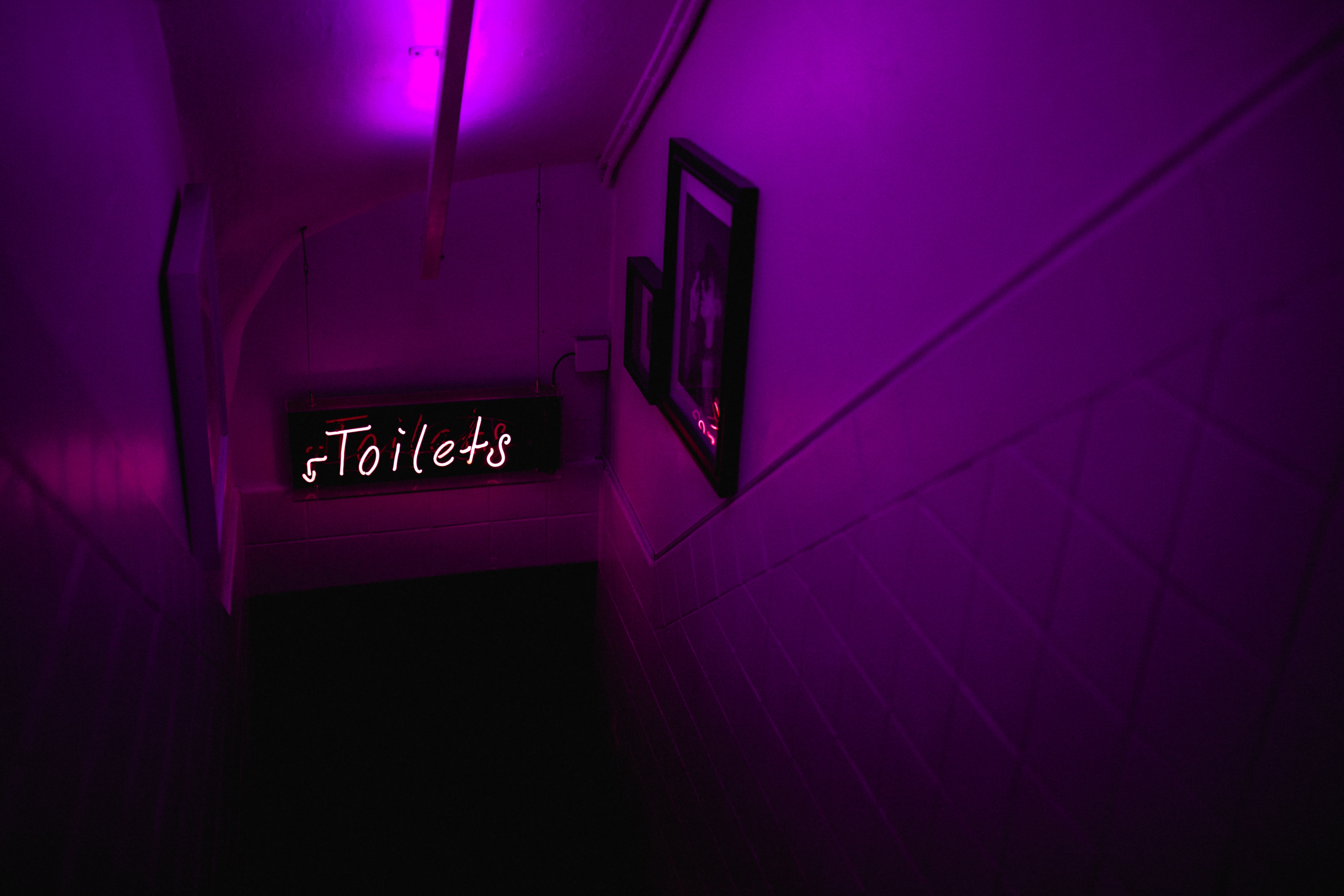 purple Toilet signage downstairs