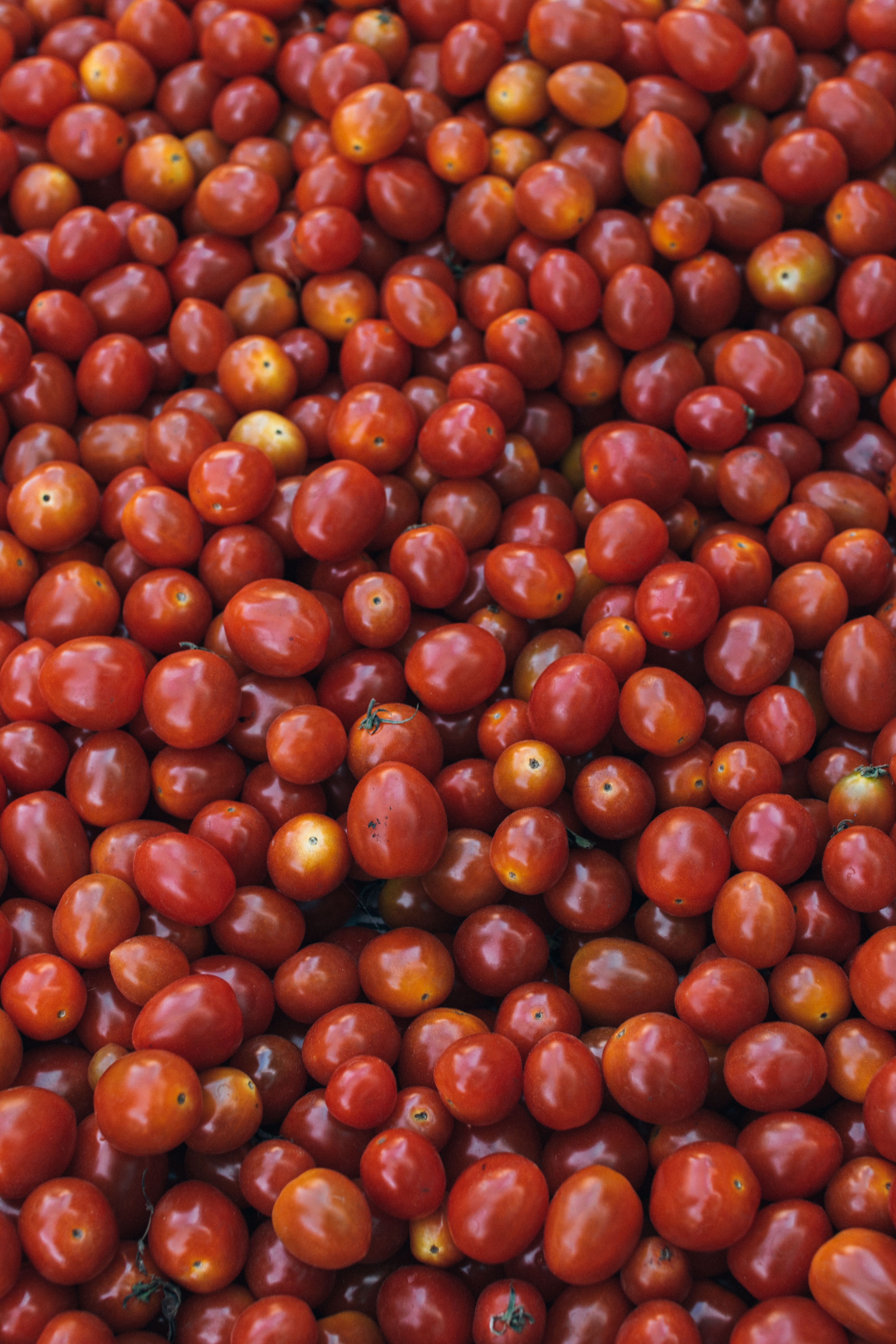 bunch of round red fruit