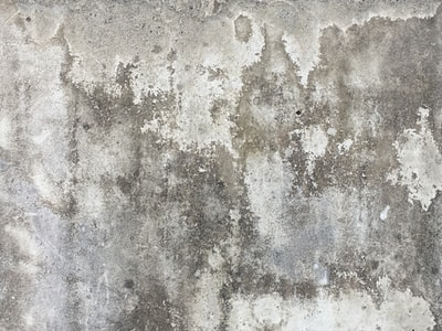 I am drawn to random patterns where ever they present themselves. Cement is a great canvas for these surprising stories. I found this in seating blocks, set against nature, behind the length of condos in Redmond, WA.
