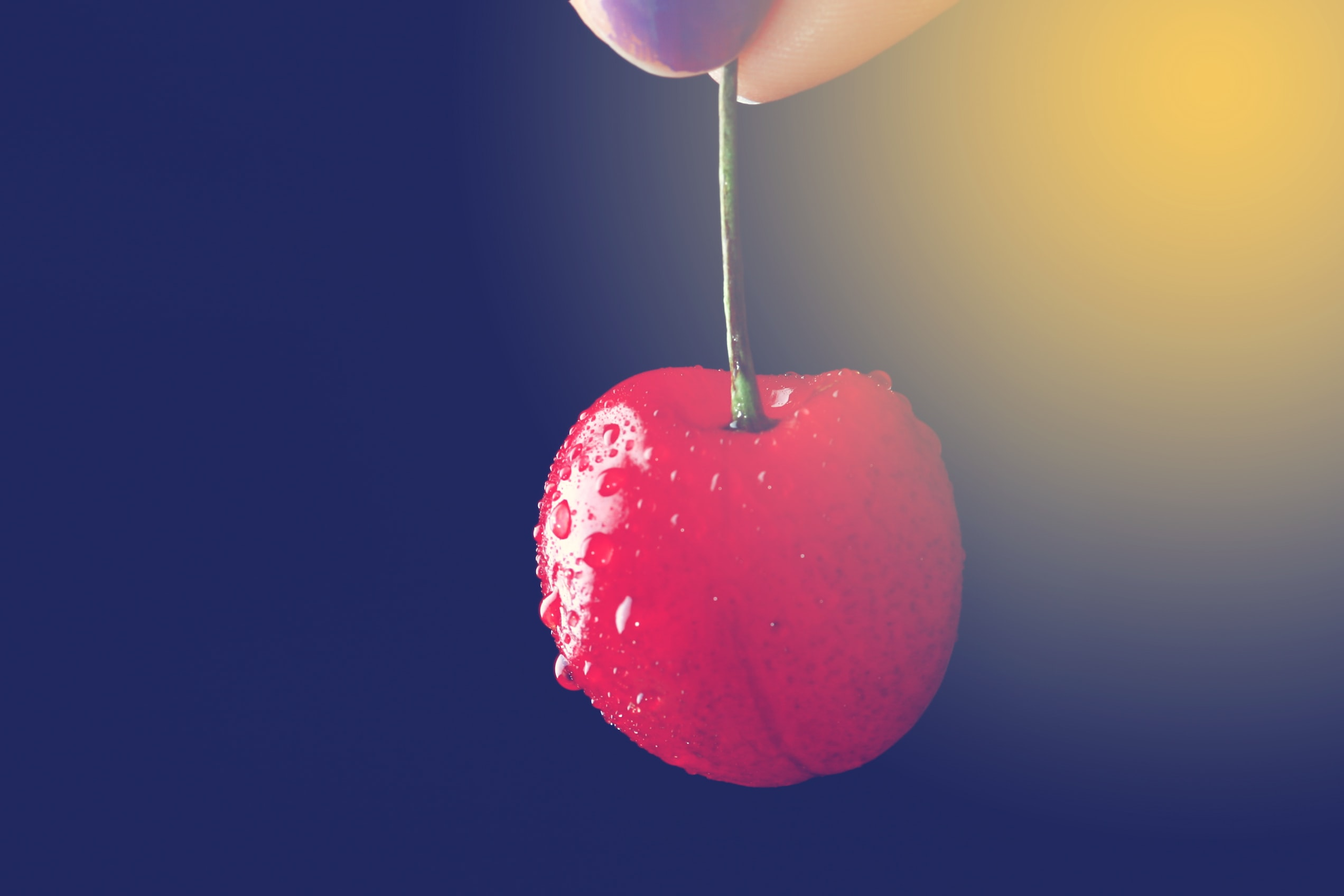 selective focus photography of person holding cherry
