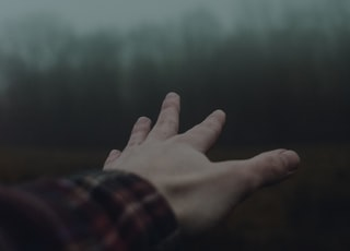 human hand in shallow focus photography