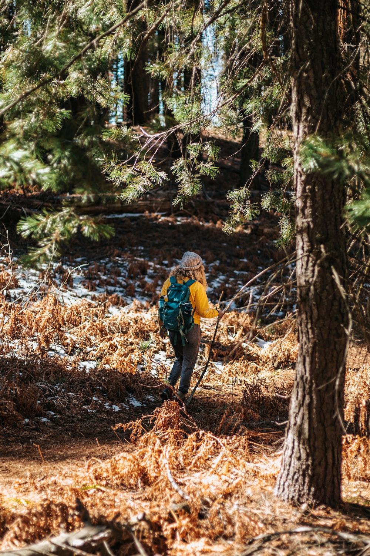 woman standing near body of water under green leaf tree