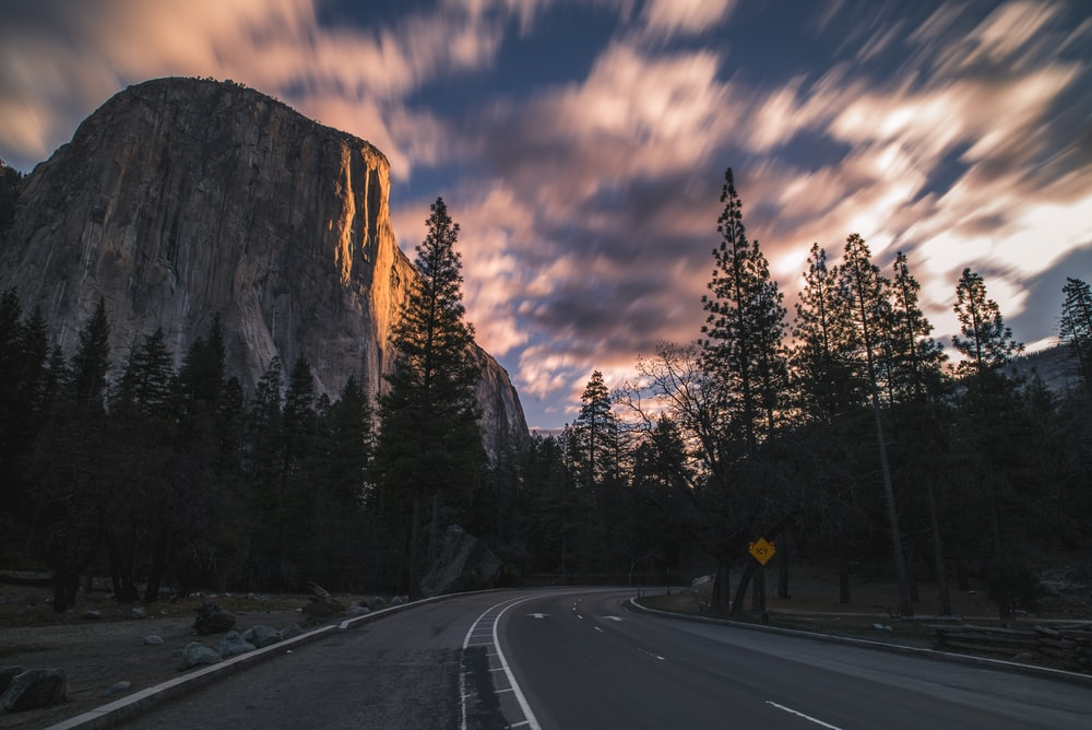 time lapse photography of road surrounded with trees
