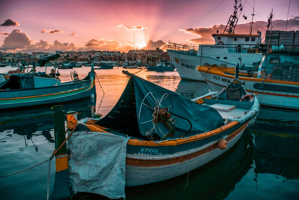boats on body of water during golden hour
