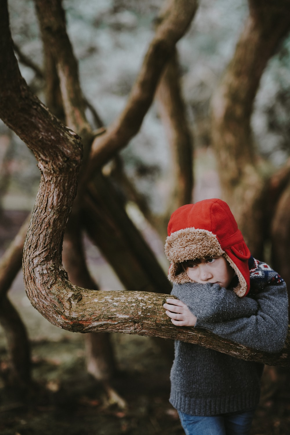 low light photography of boy in red ushanka hat learning on tree branch