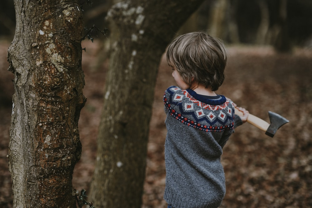 boy in gray shirt holding axe beside tree trunk during daytime