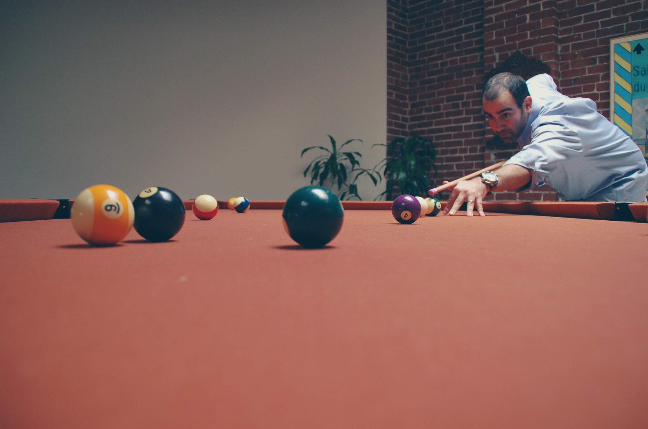 man playing billiard near green leafed plants