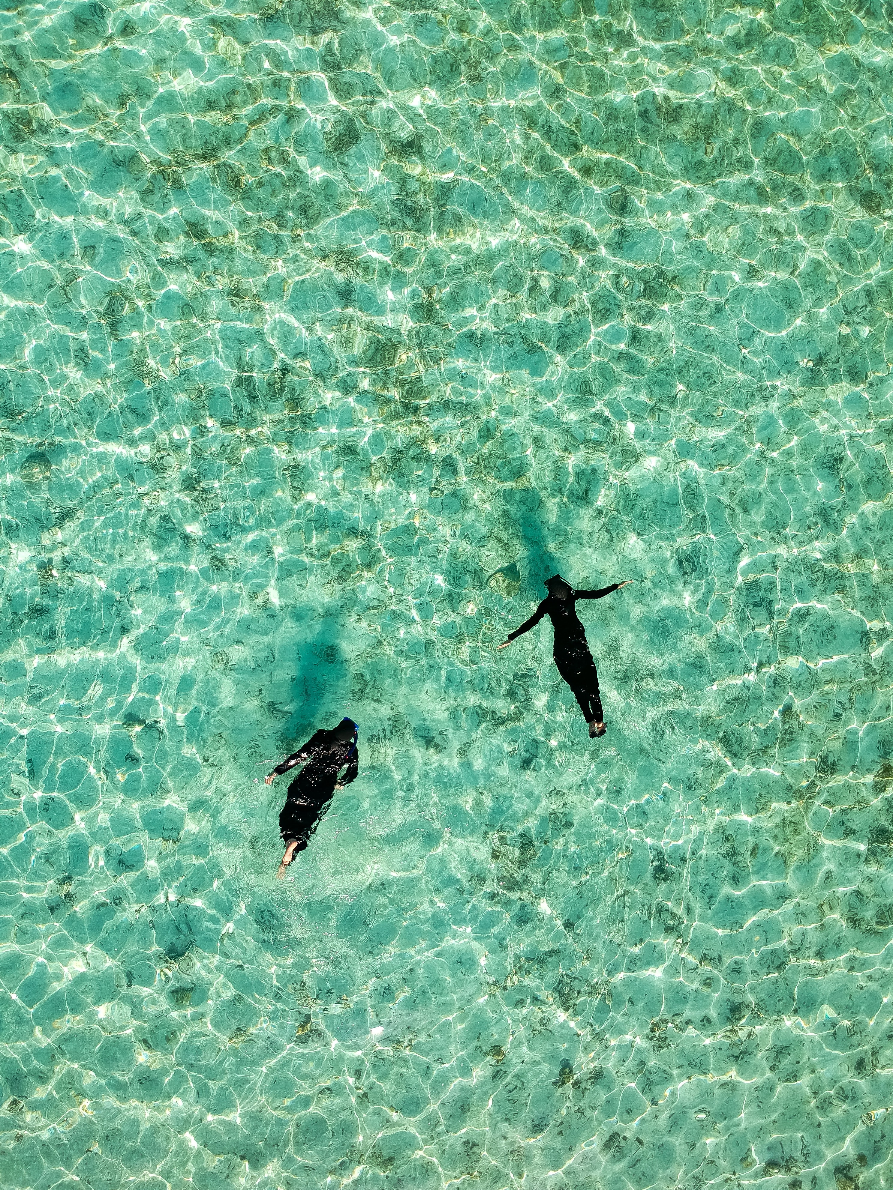 aerial photo of two human swimming on body of water