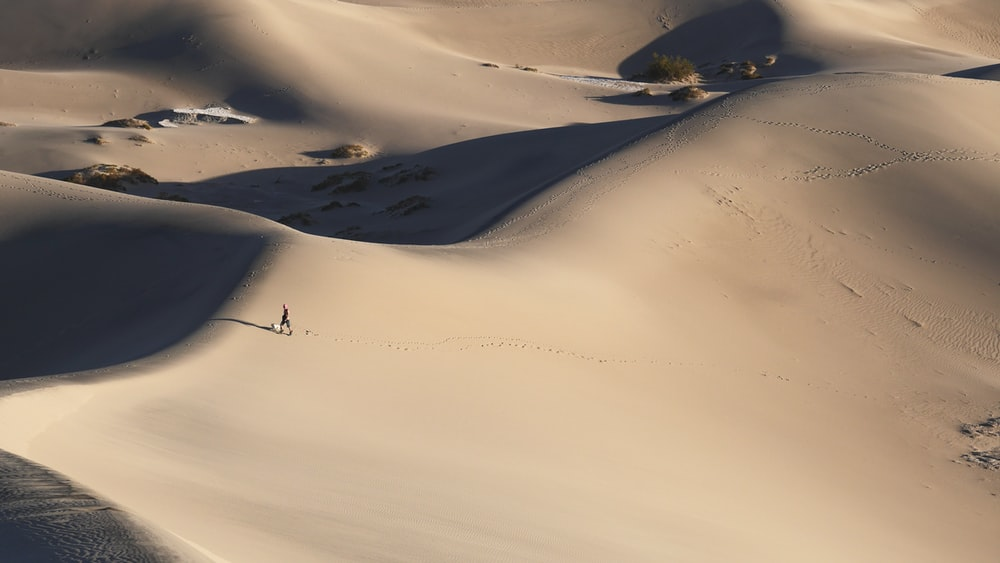 person walking alone in middle of desert