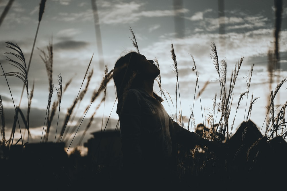 woman sits on grass during dawn