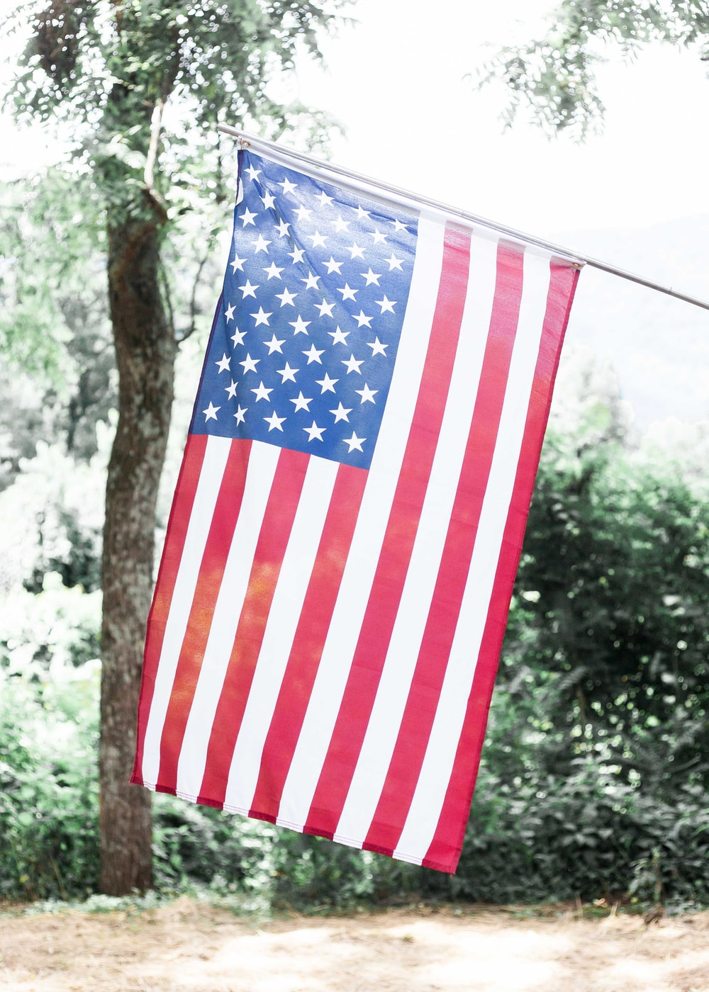 US flag with trees background