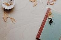 brown and blue hardbound book