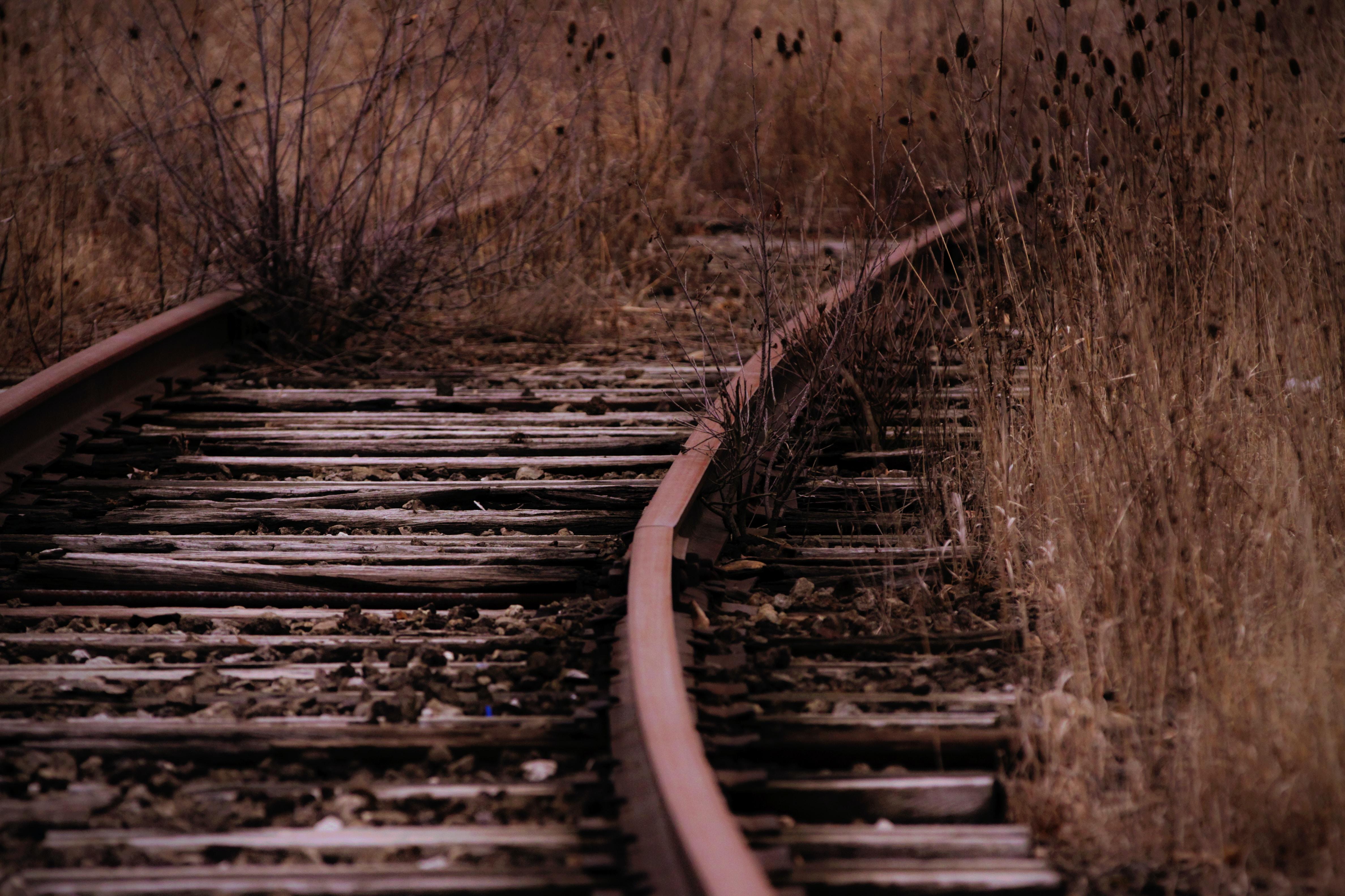 railroad surround with grass